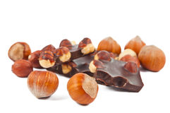 Hazelnuts with chocolate isolated Stock Images
