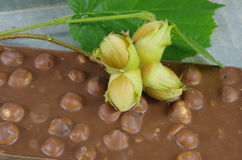 Hazelnuts and chocolate Royalty Free Stock Photography