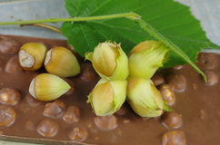 Hazelnuts  and chocolate Royalty Free Stock Images