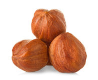 Hazelnuts close-up Stock Images