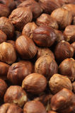 Hazelnuts close-up Royalty Free Stock Photos