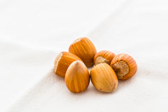 Hazelnuts close up Stock Photography