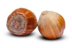 Hazelnuts close-up  on white background. Clipping path. Some hazelnuts close-up  on white background. Clipping path Stock Photos