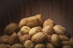 Hazelnuts close up Stock Photos