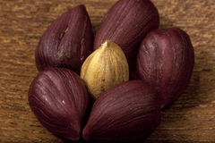 Hazelnuts close up Stock Photography