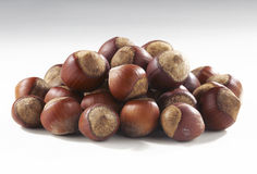 Hazelnuts in closeup. Filbert isolated on white background Stock Image