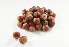 Hazelnuts in closeup. Filbert isolated on white background Stock Images