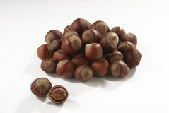 Hazelnuts in closeup. Filbert isolated on white background stock photos