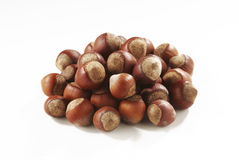 Hazelnuts in closeup. Filbert isolated on white background Royalty Free Stock Photo