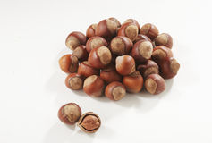 Hazelnuts in closeup. Filbert isolated on white background royalty free stock photos