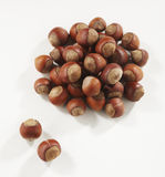 Hazelnuts in closeup. Filbert isolated on white background stock photo