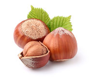 Hazelnuts in closeup Royalty Free Stock Photos