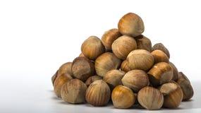 Hazelnuts closeup on a light background Stock Images