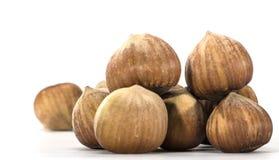 Hazelnuts closeup on a light background Royalty Free Stock Photos