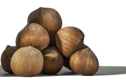 Hazelnuts closeup on a light background Royalty Free Stock Photography