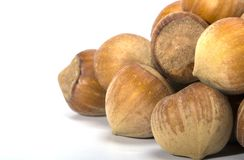 Hazelnuts closeup on a light background Stock Photo