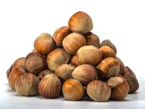 Hazelnuts closeup on a light background Royalty Free Stock Images