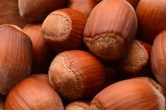 Hazelnuts closeup. Tasty hazelnuts as background close-up Stock Image