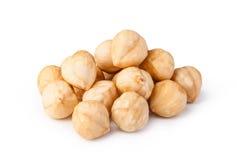 Hazelnuts. Closeup view of hazelnuts isolated on white background Royalty Free Stock Images