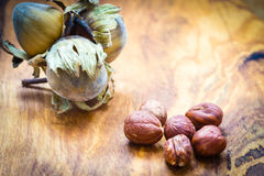 Hazelnuts cluster filbert nuts in the hard shell. Healthy food full of fatty acids, organic nutrition. Hazelnuts  kernel and cluster filbert nuts in hard shell Stock Photo