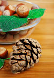 Hazelnuts and cone Royalty Free Stock Image