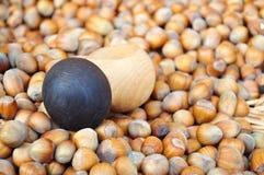 Hazelnuts with cracker Stock Image