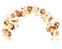 Hazelnuts crushed in the air on white background royalty free stock images