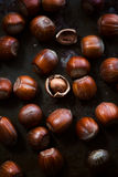 Hazelnuts on dark rusty background Royalty Free Stock Photos