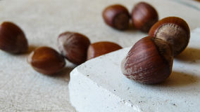 Hazelnuts. Detail view of a group of raw hazelnuts with shell in an interior setting Royalty Free Stock Photo