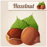 Hazelnuts. Detailed Vector Icon Stock Photos