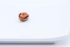 Hazelnuts On A Dish Stock Image