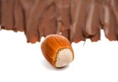 Hazelnuts dokrętki czekoladowa kremowa pasta obraz royalty free
