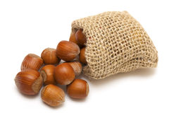 Hazelnuts falling from a miniature burlap sack Royalty Free Stock Image