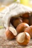 Hazelnuts (filbert). On the wood Royalty Free Stock Photo
