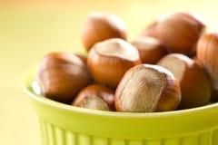 Hazelnuts (filbert). On the wood Royalty Free Stock Photos