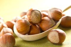 Hazelnuts (filbert). In the spoon Royalty Free Stock Photo