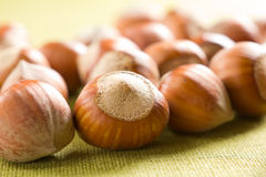 Hazelnuts (filbert). On the textile Royalty Free Stock Image