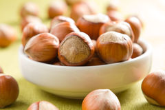 Hazelnuts (filbert). On the white bowl Stock Images
