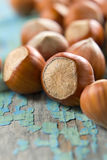 Hazelnuts (filbert) Royalty Free Stock Images