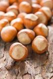 Hazelnuts (filbert). On the bark Royalty Free Stock Image