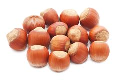 Hazelnuts or filbert Royalty Free Stock Photos