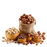 Hazelnuts, filbert isolated. Hazelnuts, filbert on white background Royalty Free Stock Photos