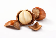 Hazelnuts, filbert on white Stock Photos