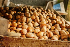 Hazelnuts, filbert on  wooden background Royalty Free Stock Photography
