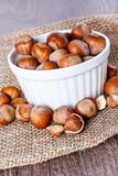 Hazelnuts Stock Photography