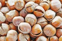 Hazelnuts. Fry a bunch of ripe hazelnuts Royalty Free Stock Photos