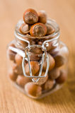 Hazelnuts in a glass jar Stock Image
