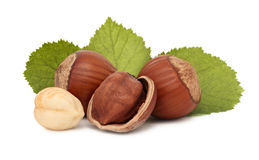 Hazelnuts with green leaves (isolated) Royalty Free Stock Images