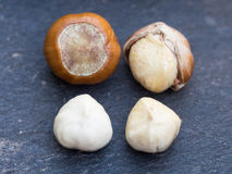 Hazelnuts hard shell to kernel concept. Macro photography of four hazelnuts in different stages. From a hard shell fruit to a freshly pealed white kernel stock image
