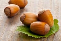 Hazelnuts with hazelnut leaf on wooden background Royalty Free Stock Photography